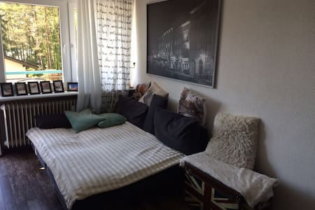 Appartment in ruhiger & zentraler Lage in Waldshut - Waldshut-Tiengen - 公寓