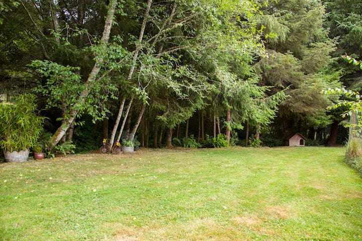 Lush natural fern, Alder & Spruce trees lining the property. Privacy plus!