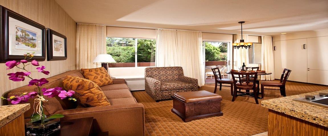One Bedroom w/ Kitchenette & Patio