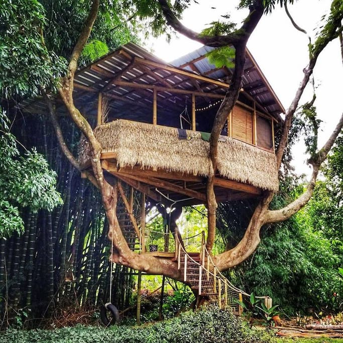 Adventure central treehouse casas en el rbol en for Alquiler casa arbol