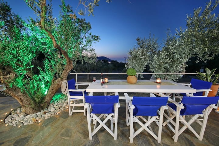 Skopelos Blue Heaven Villa in olive grove