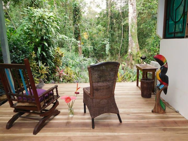 Casa Lina exotic jungle house (proper sterilized)