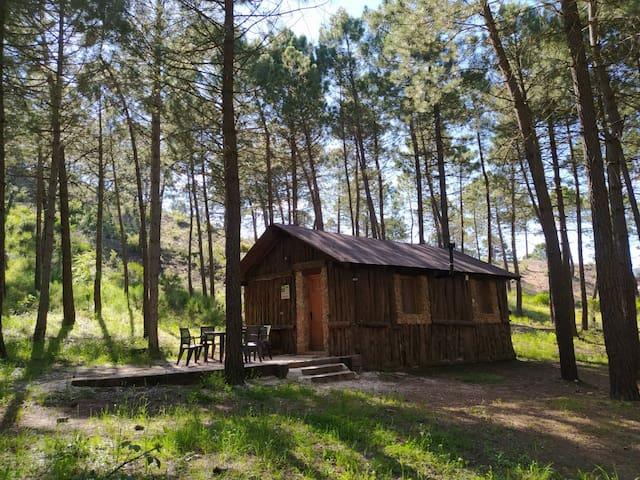 El Rincón de María.Parque natural de Rio Mundo.