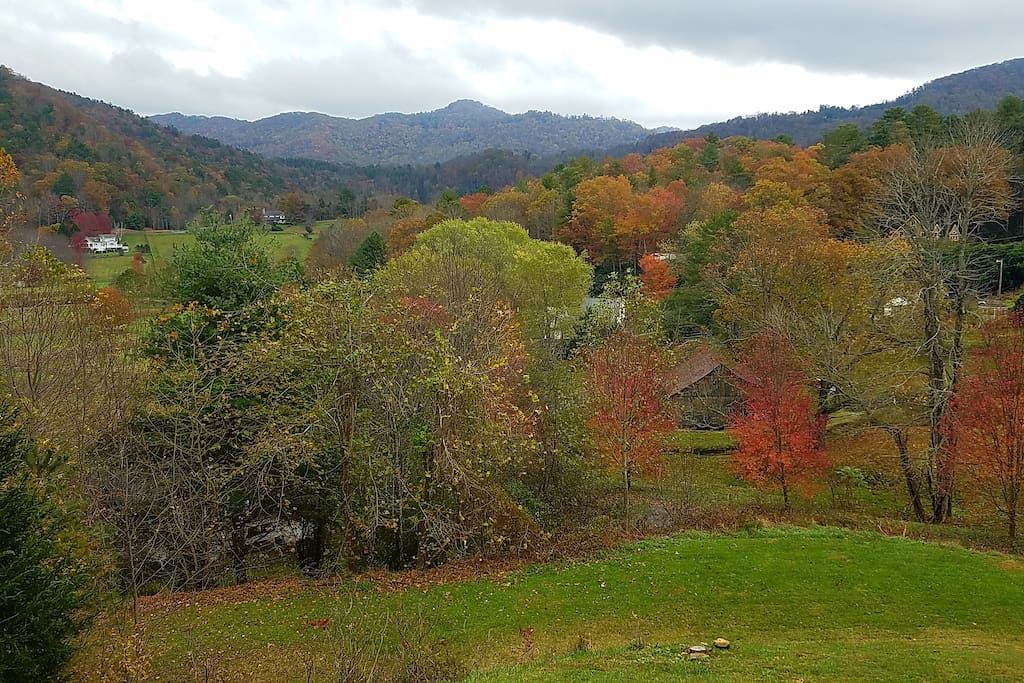 Fall view from our cabin living room
