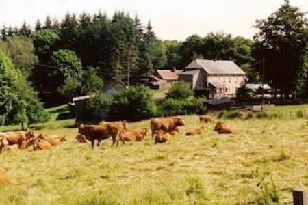 4 chambres au calme Parc Naturel Régional MORVAN - Uchon - Haus