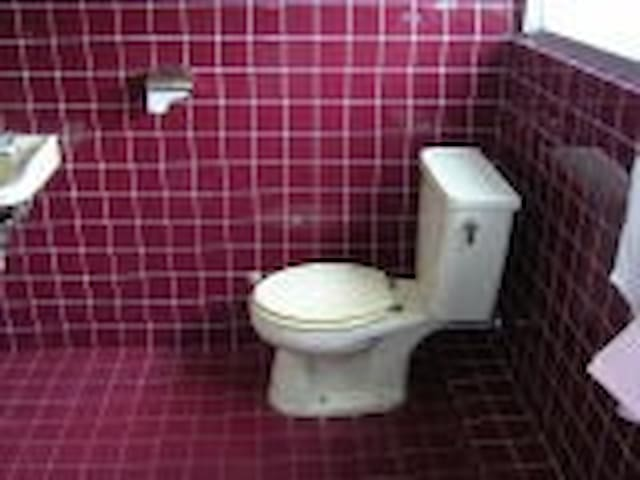 Toilet in the guest room