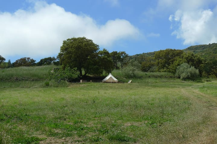 Nature holiday in Bell tent