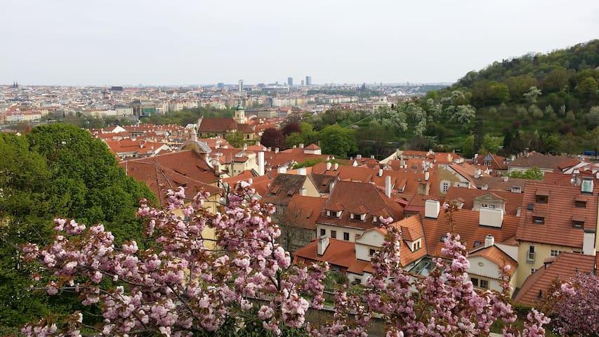 Apartmán v klidné lokalitě blízko centra - Praha - Byt