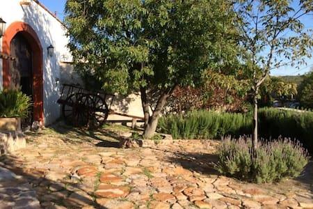 Hacienda Caquixtle - Encarnación de Díaz - Rumah