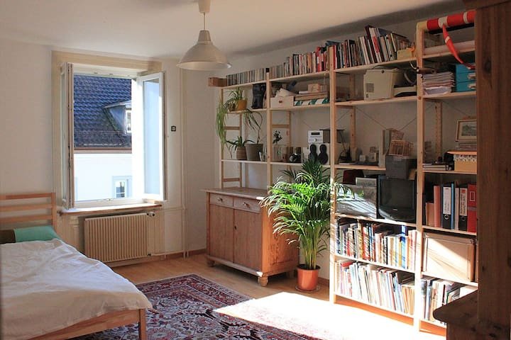 Charming & comfortable flat in downtown Zürich.