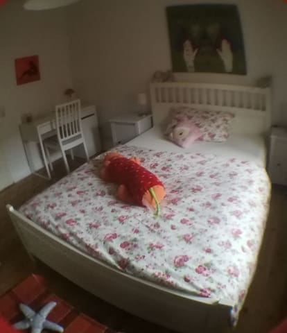 Schönes Zimmer/ zentrale Lage / Uni-Nähe