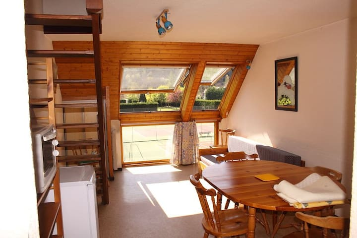 Appartement vielle aure-Saint lary soulan - Vielle-Aure - Wohnung