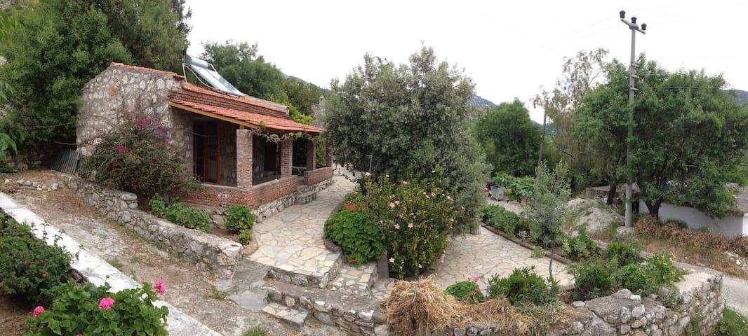 Yesil Ev - The Yellow Cottage - Söğüt - Bed & Breakfast