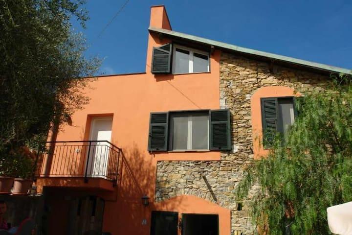 "Monolocale ""Immerso ""Olivastri - Olivastri - Lägenhet"