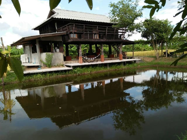 Local Experience in Organic Farmstay-20KM from CNX