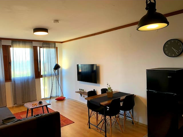 B&P Brand new, cozy 1 bedroom apartment in Bansko