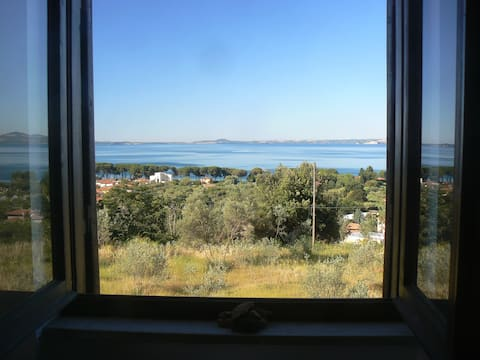 Et vindue  ved søen. Lejlighed med have