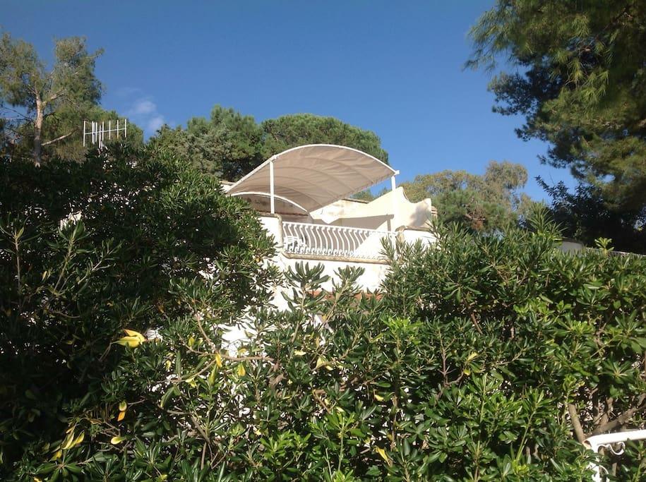 Terrazza panoramica di Ortensia Rosa