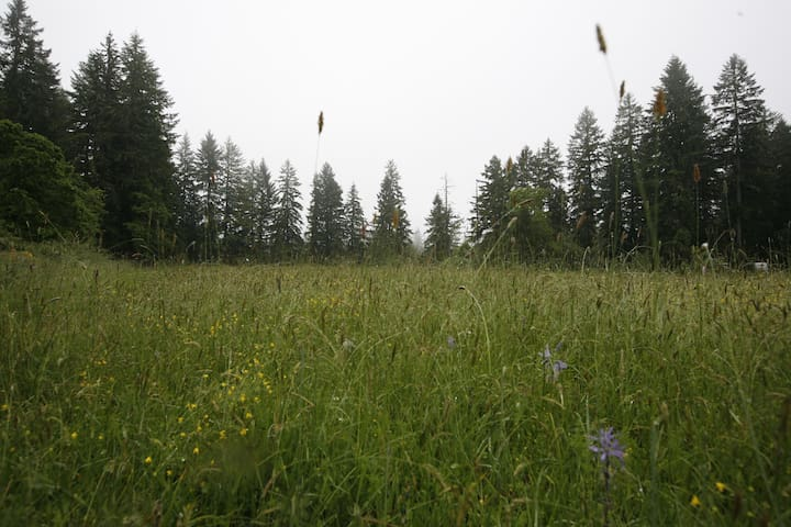 Ecovillage Camping Meadow