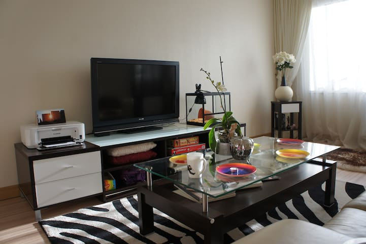 Comfortable apartment in Riga - Rīga - Apartment