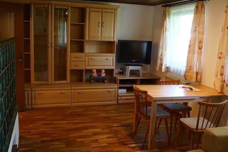 Arbeiterzimmer und Monteurzimmer - Zimmer 03