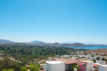 Bodrum: spectacular view - and owl.