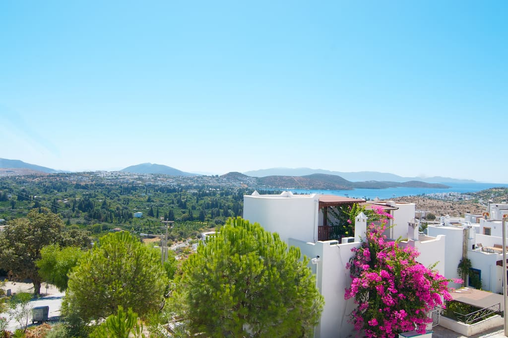 There are only two green areas on the Bodrum peninsula - and Bitez is the nicer of the two. The view from our window.