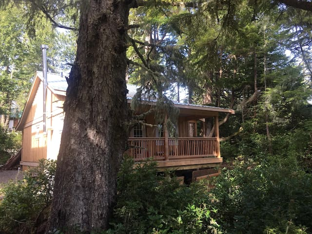 Oceanfront! Sitka House by Natural Elements Vacation Rentals