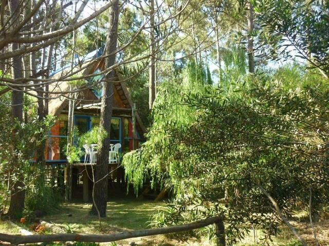 Venacatú Che - Cabaña Bosque y playa