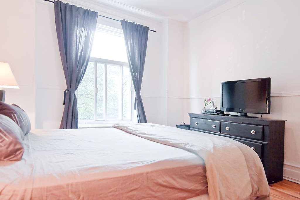 Luxurious Plateau Apartment Apartments For Rent In