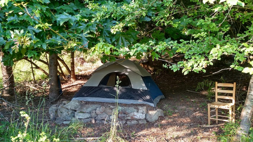 7'x8' Minimalist Tent w/o bedding - Deer Harbor