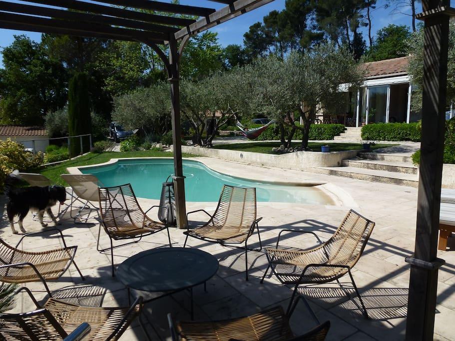 piscine de 3x7  arrosage automatique, oliviers, pins, essences méditerranéennes