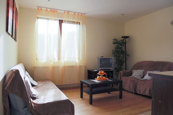 Nice & Cozy Apartment - Sinaia - Flat