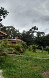 Tamarindo Charming Cozy Cabin #2 -  7+ people - Tamarindo