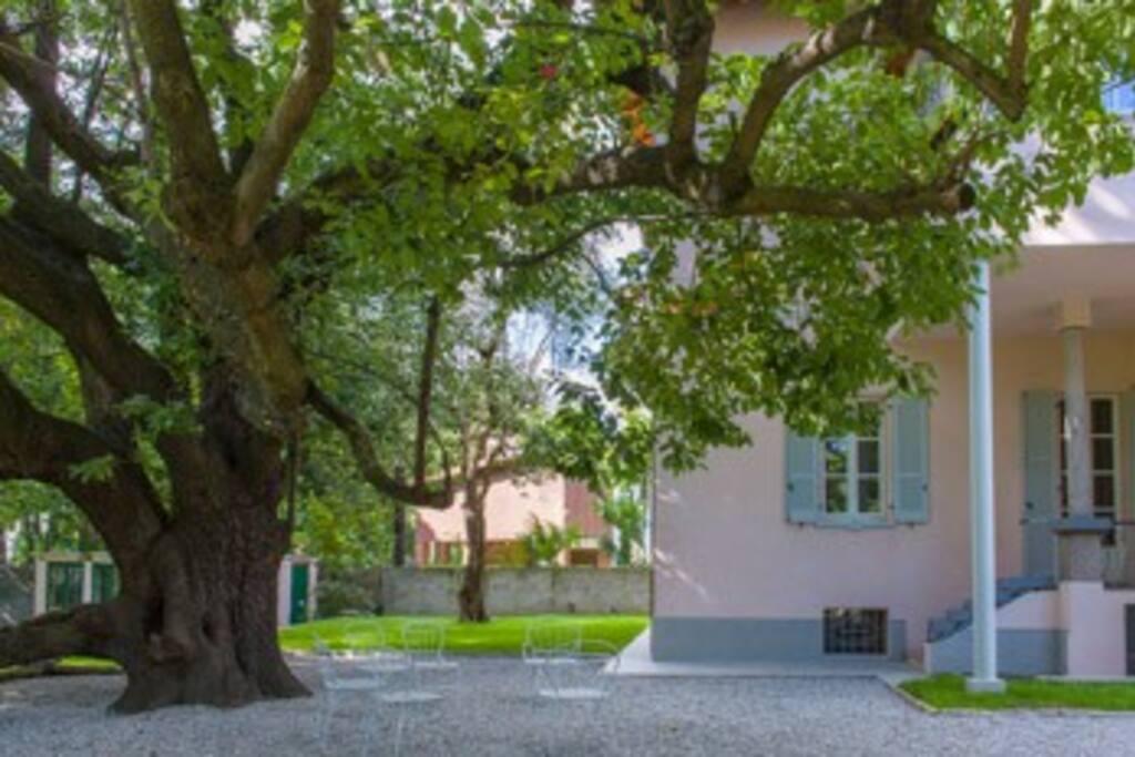5 Villa Foppa the entrance and the garden