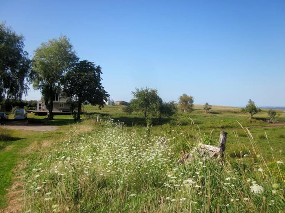 Disappear down a mowed path , to a beautiful orchard, on your way to the beach for a swim!