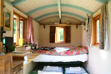 Sumptuous Shepherd's Hut at Hayne, Devon - Crediton