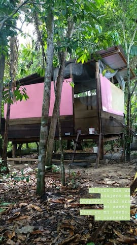 Pink House - jungle life in the hood :)