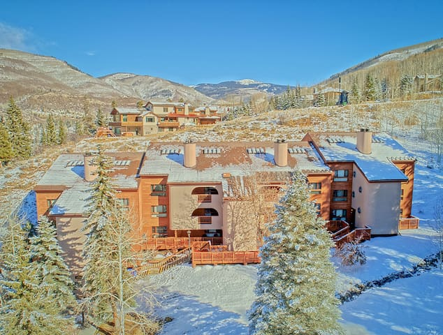 Huge Vail condo for skiing or just enjoying nature