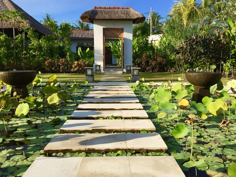 Stepping stones through the lotus pond entry