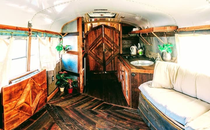 A Boondocker's Dream on WHEELS★In Hobo Holler★WiFi