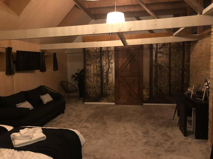 In Harlingen Staete suite voor max 5 personen