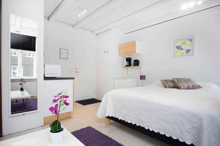 *TWO PRIVATE STUDIO APT. - PERFECT FOR COUPLES* - Reykjavik - Leilighet