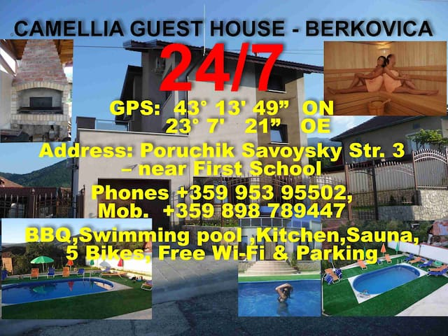 Camellia Guest House Housing & Host