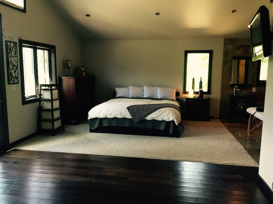 Master Bedroom Suite with 2 walk in closets, 2 sinks and massage table.