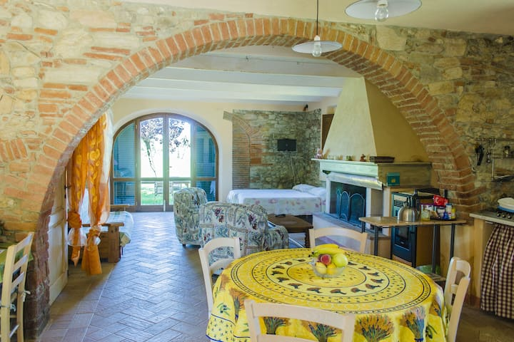 Tuscany apartment, Sea, food, wine! - Castagneto Carducci - Daire
