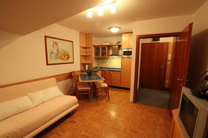 Cute apartment in Kranjska Gora - Municipality of Kranjska Gora - Apartament