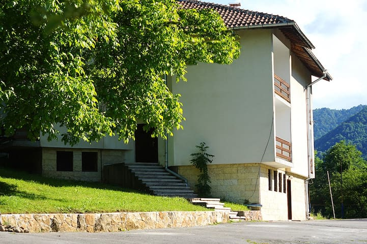 Hotel and rooms in Cherni Vit