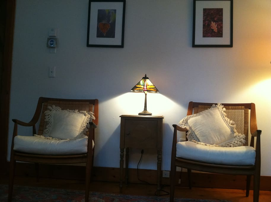 Chairs with dragonfly lamp