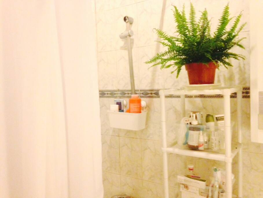 And green bathroom :)